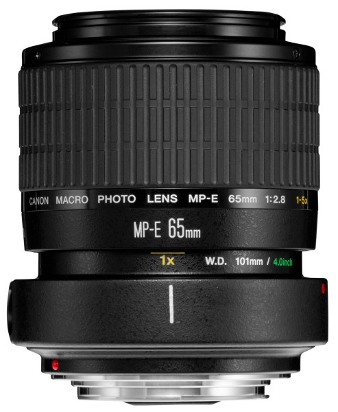 Canon MP-E 65mm/2,8 Macro Lupenobjektiv