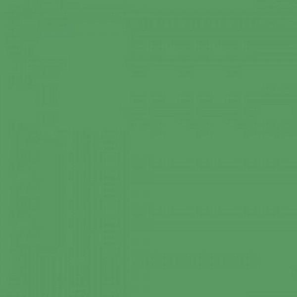 BD Foto Green 1,35x11 Papier-Hintergrund