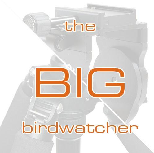 """FEISOL Stativset 3472LVBBW """"the big birdwatcher"""""""