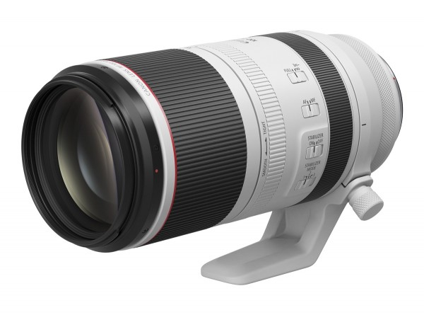 Canon RF 100-500 mm / 4,5-7,1 L IS USM