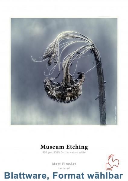 Hahnemühle Museum Etching 350g/m² 25-Blatt-Packung